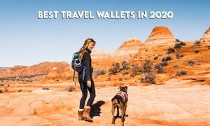 best-travel-wallets-in-2020